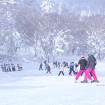 スキーやスノーボードでの事故の保険、スキー保険、個人賠償責任保険、国内旅行傷害保険は使える?