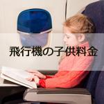 飛行機の子供料金は何歳から何歳まで?座席の利用ルールと小児運賃の注意点